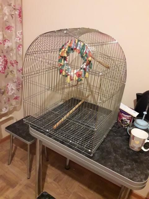 Обменяю большую клетку для птиц на клетку для грызунов.