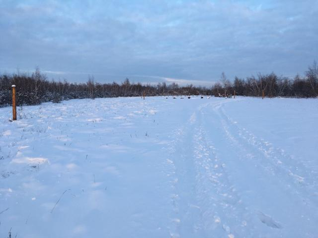 Продаю земельный участок по Покровскому тракту 11км. , правая сторона, ИЖС, сухой, ровный,  свет рядом. Красных линий нет.