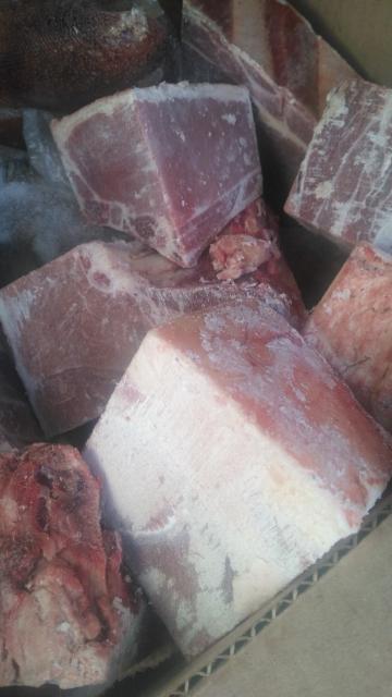 Продаю жеребятину целиком распиленная на маленькие куски для поджарки примерно 100 кг