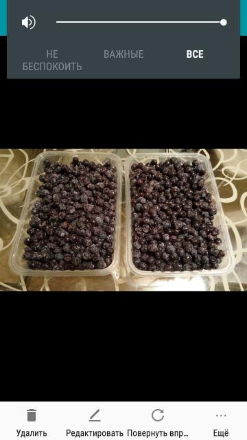 Продаю свежемороженую голубику алданскую 1л. Богат витаминами, очень спелая, полезная.