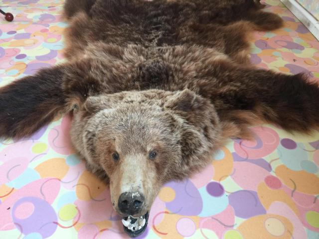 Напольный коврик шкура медведя с головои хорошая выделка мастерски сделанная голова с глазками зубками проч. Оберег украшение интерьера уют