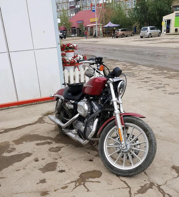 Обмен на авто равноценый.Harley Davidson sportster 883. 2004 года выпуска.Красный цвет.привод ремень.883куб.53л.с 75н.м отличном состоянии.все доки есть.пробег минимальный 15т.км воздушного охлаждения.выхлоп кобра.продажа