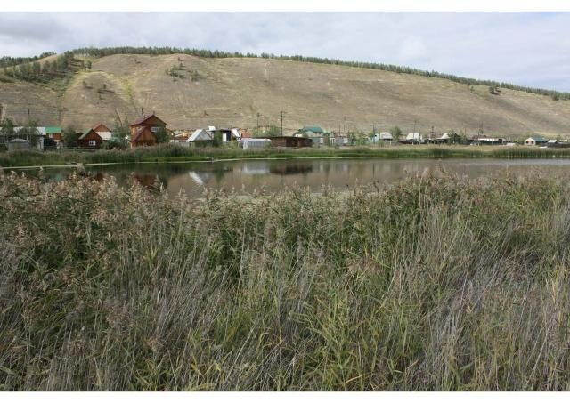 Продаю земельный участок с выходом на озеро,подключен к э/сетям в 50 м газ в 2019 подведут к участку,возможен обмен на квартиру,студию в каменном строении. Всё в собственности.