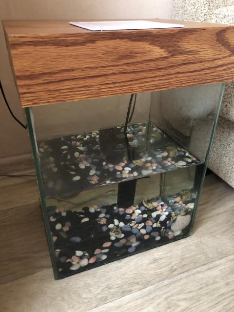 Продаю аквариум на 30 литров. В комплекте компрессор, грунт, светодиодная лампа и две рыбки (гуппи). С доставкой, без торга