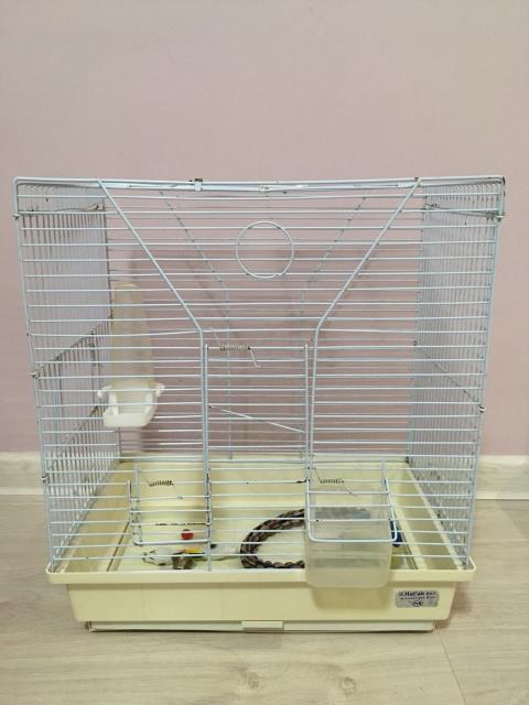 Продаю клетку (Высота 42; Длина 38,5; Ширина 25). Подойдёт для попугаев, хомяков и т.д.
