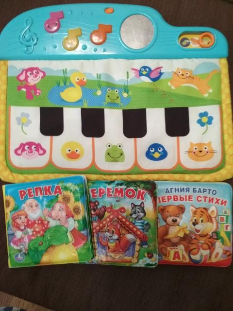 Игрушки на возраст до 1.5 лет б/у - детское пианино в рабочем состоянии и книжки с пищалкой. С книжками можно купаться. Все вместе 500 рублей. Самовывоз с центра.