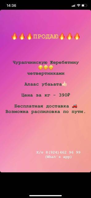 Продаю Жеребятину Чурапчинскую😋 Четвертинками  (Алаас убаьата👍🏻)  Бесплатная доставка🚗 Возможна распиловка по пути🙌🏻