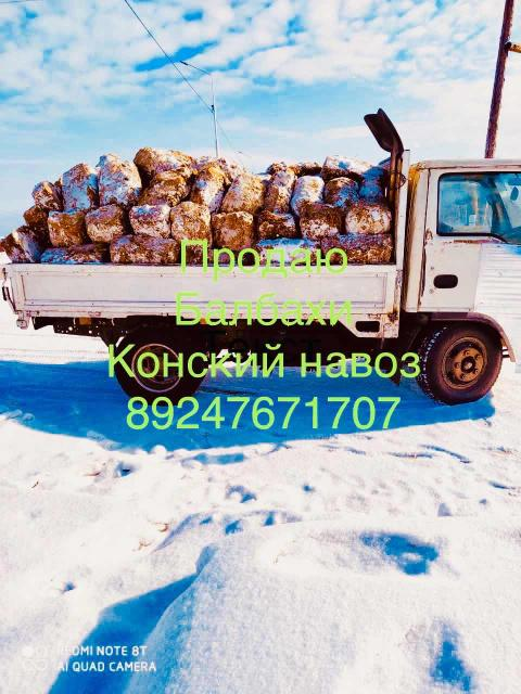Продаю балбах навоз крс грузовик 4 куба. Конский навоз можно в мешках. Звонки