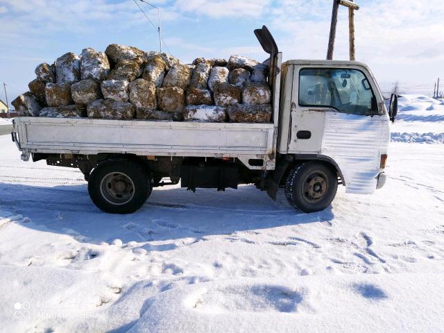 Продаю балбах навоз КРС чистые без соломы грузовик 4 куба. Конский навоз в мешках