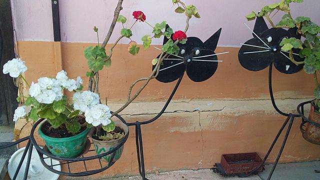 Продаю новые цветочницы Кошка.кованные..остаток 3шт.не Китай.сделаны для себя