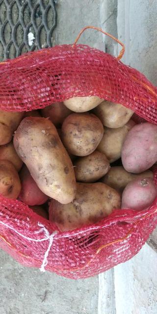 Продаю экологически чистую Олекминскую картошку,сорта Адретта и Розара вперемешку,с доставкой до квартиры,ватсап звонки, принимаем моб.банк ,наличка