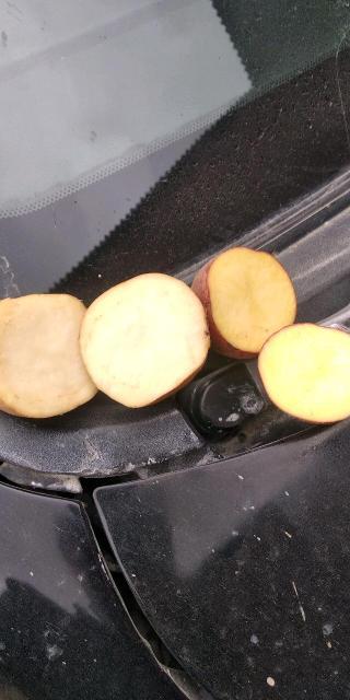 Продаю Олекминскую картошку красная белая вперемешку 1650рб-30кг рб мешок сетка, звоним пишем не стесняемся,принимаем моб.банк.наличка