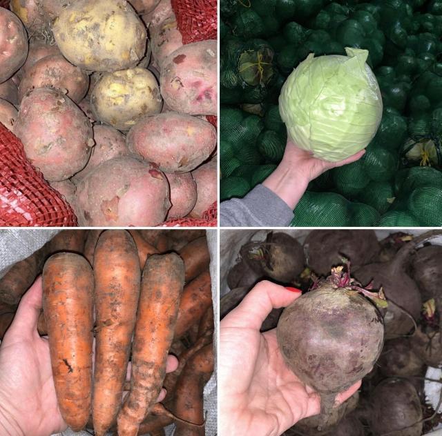 Местные овощи с доставкой квартиры👩🏼🌾👨🏻🌾 ⠀ ТОЛЬКО What's app📲 ⠀ Выращиваем сами в Магане, овощи свежие, вкусные, как на фото. ⠀ Доставка действует при минимальной сумме заказа от 1000. ⠀ Цены: ⠀ ▪️картофель красный: сетка 10 кг = 700, сетка 30 кг = 1600 ⠀ ▪️картофель белый: сетка 30 кг = 1400  ▪️капуста (засолочная) - сетка 15 кг = 800р, сетка 30 кг=1400р ⠀ ▪️капуста (некрупная, кочаны ~ по 1 кг) - сетка 15 кг = 300 ⠀ ▪️морковь - сетка 5 кг = 300 ⠀ ▪️свекла - сетка 5 кг = 300 ⠀ ▪️лук - сетка 5 кг = 300