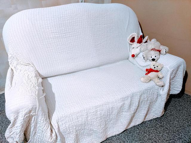 """продаю раскладной диван """" малютка """" в хорошем состоянии . Белый чехол к нему - в подарок покупателю ! Цена : 6 тысяч руб."""