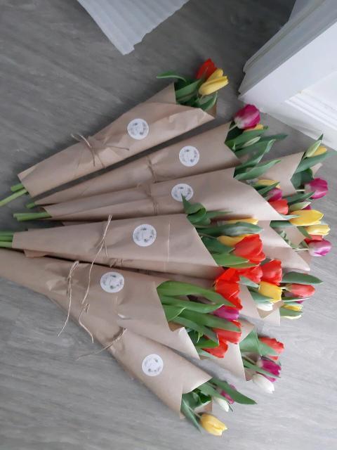 Свежие тюльпаны Цена за шт 100р Оформление бесплатно  Самовывоз с 203 мкр
