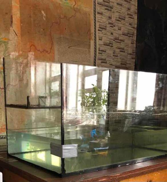 Продам аквариум  150л Высота 50см Длина 75см Ширина 50см В аквариуме установлен мостик с песком, для красноухой черепахи