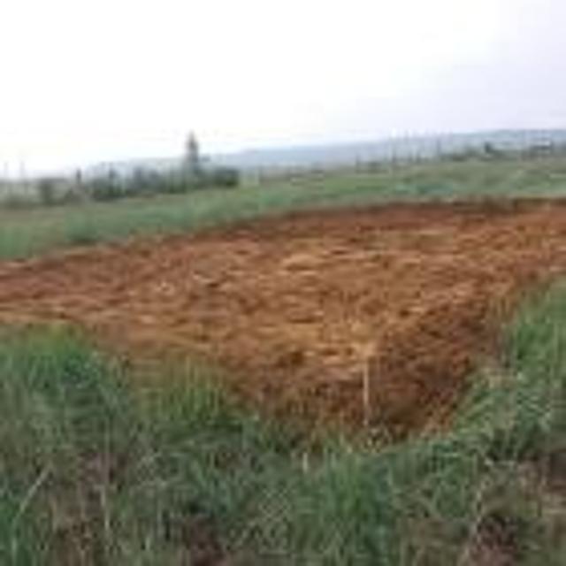 """Продаю участок,в районе """"Сатал"""",сухая,прямая. Отсыпан кильдямским песком под дом 6x10,есть возможность расширить участок,.торг"""
