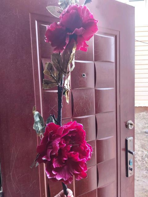 Продам цветы .все вопросы в личку