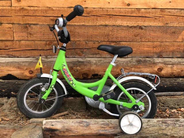 Рама двухколесного велосипеда Puky ZL 12-1 Alu выполнена из алюминия, что делает велосипед максимально легким. Геометрия рамы занижена, чтобы ребенку было легче садиться на велосипед.  Рама окрашена с помощью порошковой технологии, что гарантирует повышенную износоустойчивость.  Колеса, рулевая вилка и педали велосипеда содержат высококачественные шарикоподшипники, что гарантирует отличную управляемость, легкий ход педалей и быстрое обучение.  У двухколесного велосипеда Puky ZL 12-1 Alu колеса диаметром 12'' с высококачественными пневматическими шинами IMPAC. Колеса закрыты крыльями, оберегающими одежду ребенка от брызг с колес.  Немецкие конструкторы особое внимание уделяют безопасности. В комплект Puky для безопасной езды на велосипеде входит защита цепи, пластиковая окантовка переднего крыла SKS, передний и задний светоотражатели, безопасные грипсы и окантовка руля, звонок и флажок безопасности.  Также велосипед укомплектован подставкой для парковки и багажником.  Во всех двухколесных велосипедах Puky два вида тормоза. Торможение переднего колеса осуществляется с помощью ручного тормоза V-brake с рукояткой на руле. Задний тормоз - барабанного типа, установлен в задней втулке, торможение происходит обратным вращением педалей.  ХАРАКТЕРИСТИКИ: - На рост от 95 см, длину ноги от 40 см - Регулировка положения седла 40-49 см - Регулировка руля по высоте на 8,5 см - Вес - 8,0 кг (в коробке 9,8 кг) - Материал рамы: алюминий - Накачиваемые колеса 12'' - Колеса, рулевое управление и педали на шарикоподшипниках - Низкая посадка - Высота рамы 24 см - Подставка для парковки - Регулируемый ручной тормоз - Багажник  Комплект Puky для безопасной езды: -Защита цепи -Пластиковая окантовка на крыле переднего колеса -Передний и задний светоотражатель - Air Bag (подушечка безопасности) на руле -Звонок -Рукоятки с защитной окантовкой -Флажок