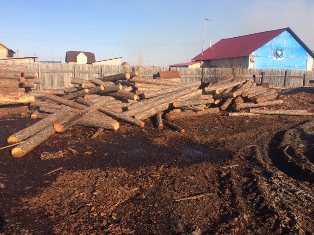 Продаю столбы на забор 2.50м 300руб. Лес кругляк тонкомер 6м,31шт